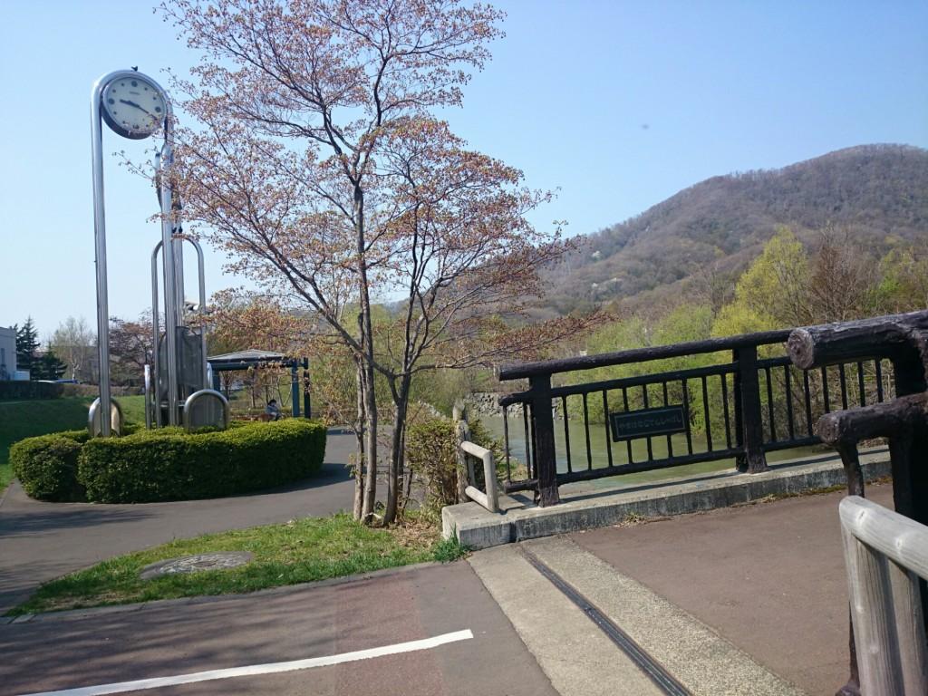豊平川サイクリングロード 山鼻あたり