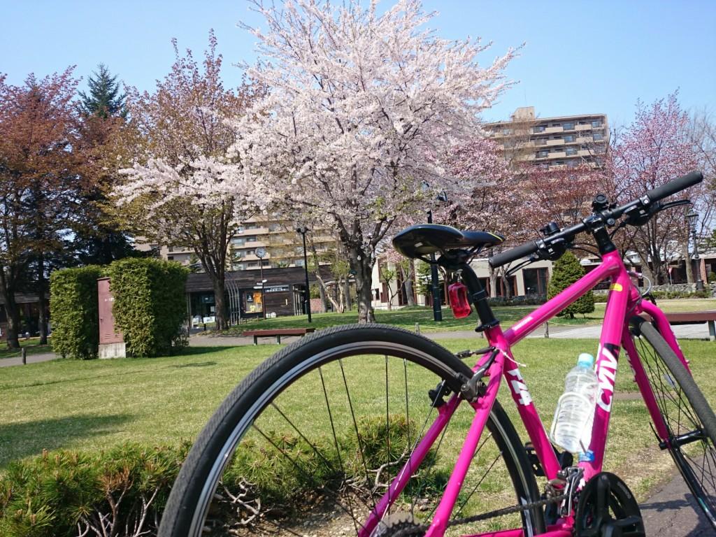 桜とCYLVA F24