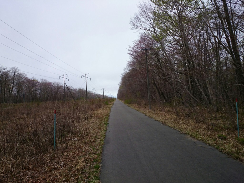 苫小牧-支笏湖 サイクリングロード 一本道
