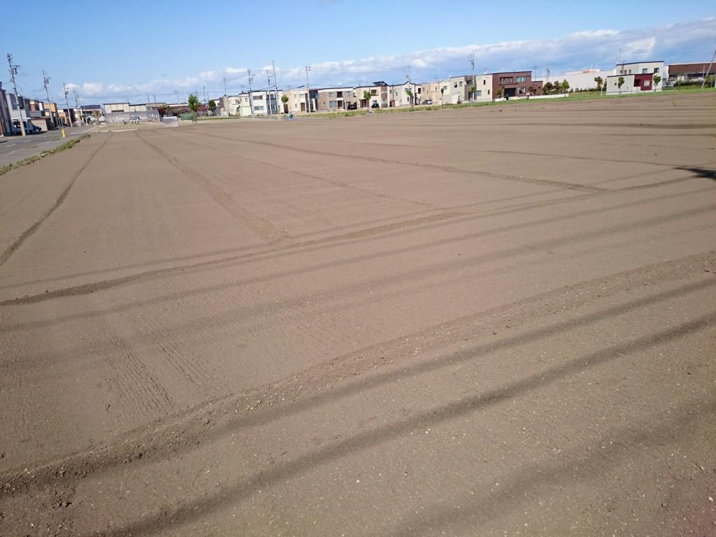 札幌市東区の畑。広い。