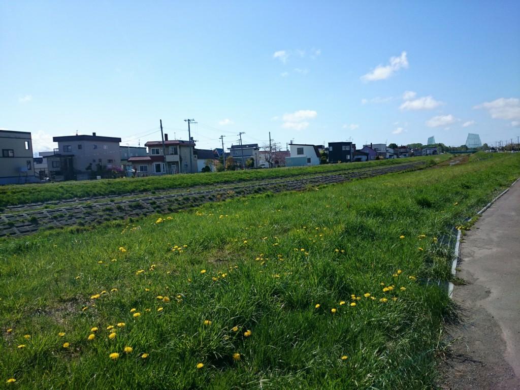 札幌市東区の広い道