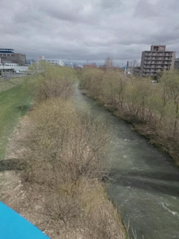 厚別あたりの川