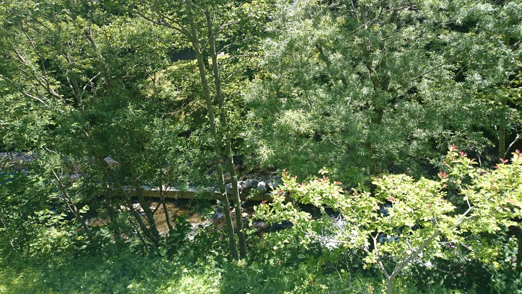 滝野すずらん丘陵公園横の川