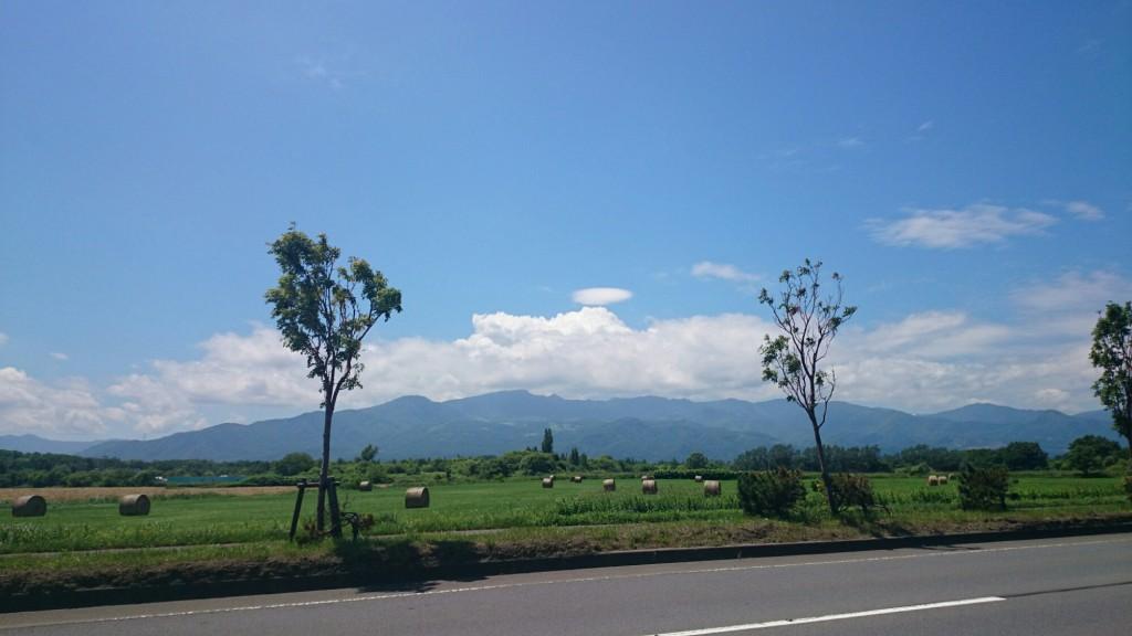 オロロンライン沿いの草原と牧草