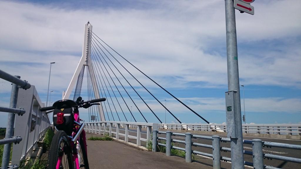 クロスバイクCYLVA F24で美原大橋を渡る