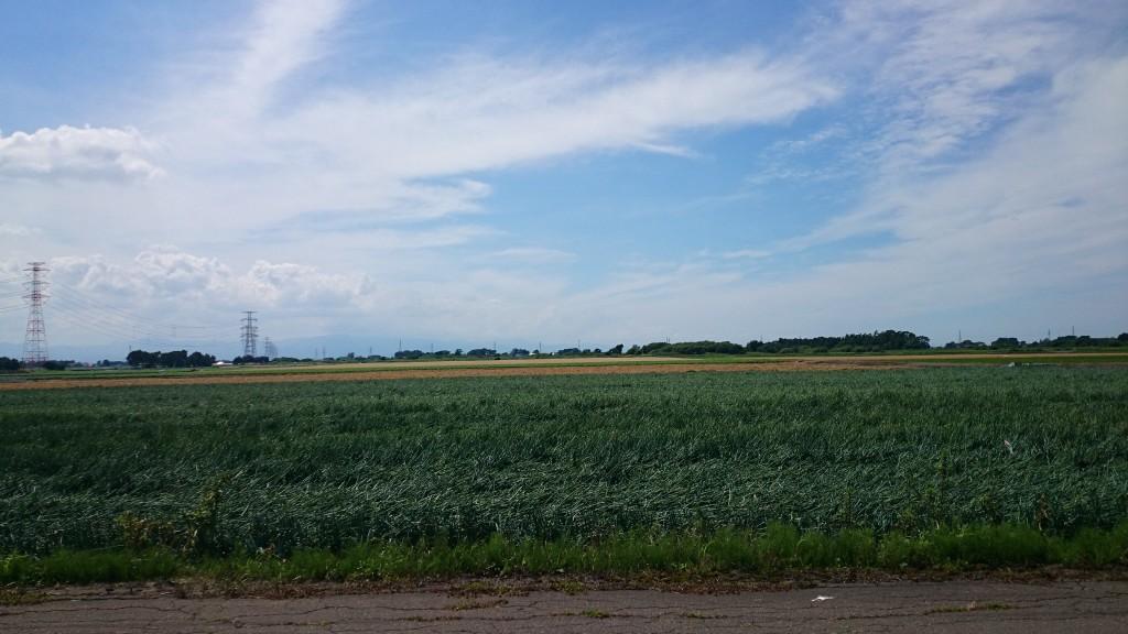 クロスバイクで篠津まで来てしまったけど、迷子になった。