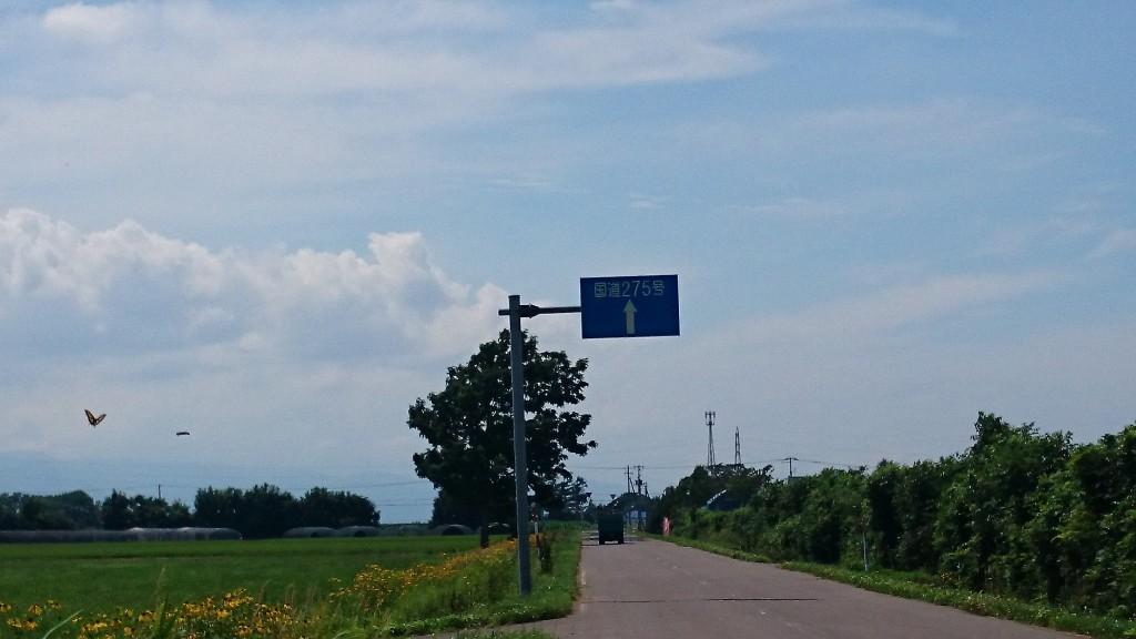 クロスバイクでサイクリング。国道275号線の青看板