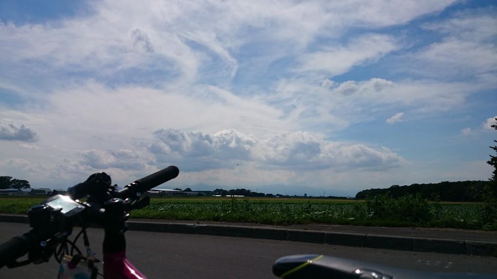 CYLCA F24と鳥。美原までのサイクリング途中。