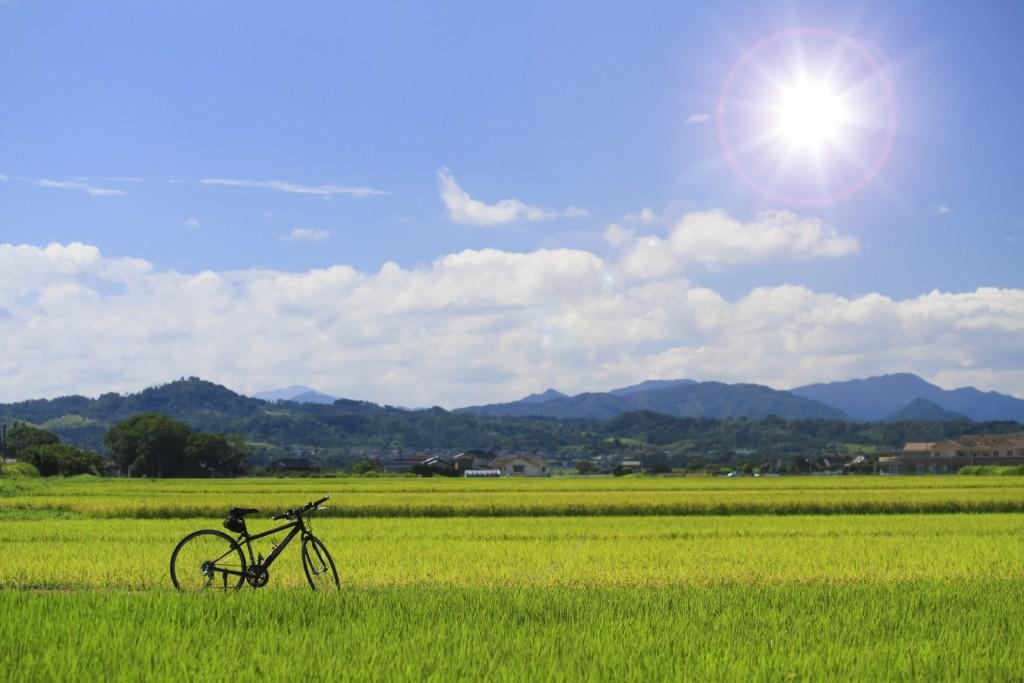 都会から田舎の風景へクロスバイクでいく