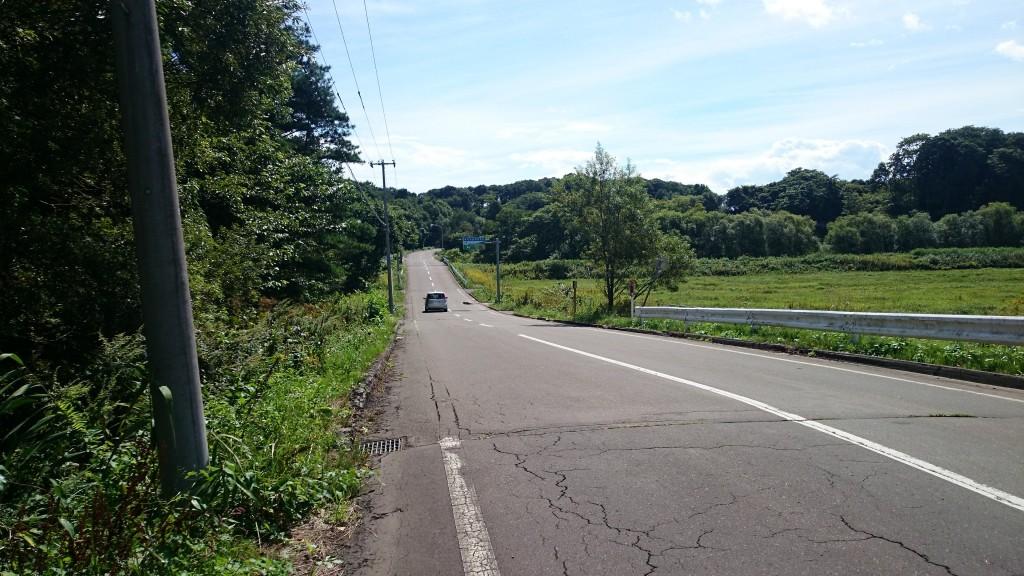 サイクリングロードに続く農免道路