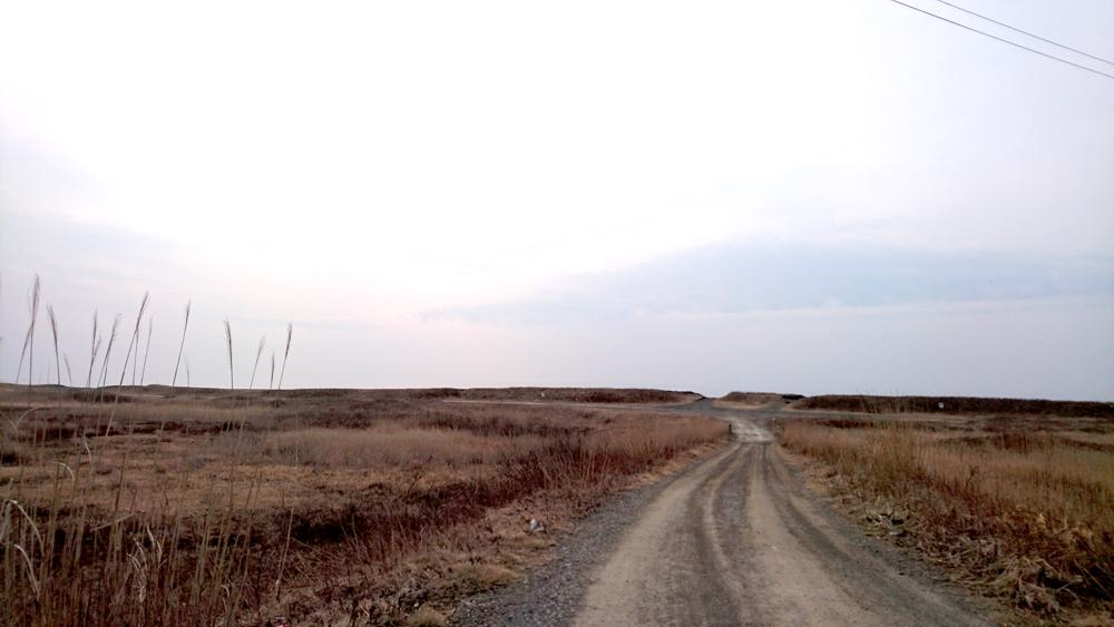 ロードバイクで苫小牧から室蘭へ行く途中に見つけたヨコスト湿原